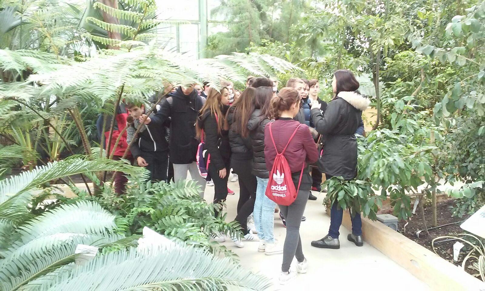 Visita al jard n bot nico de castilla la mancha 18 02 for Jardin botanico castilla la mancha